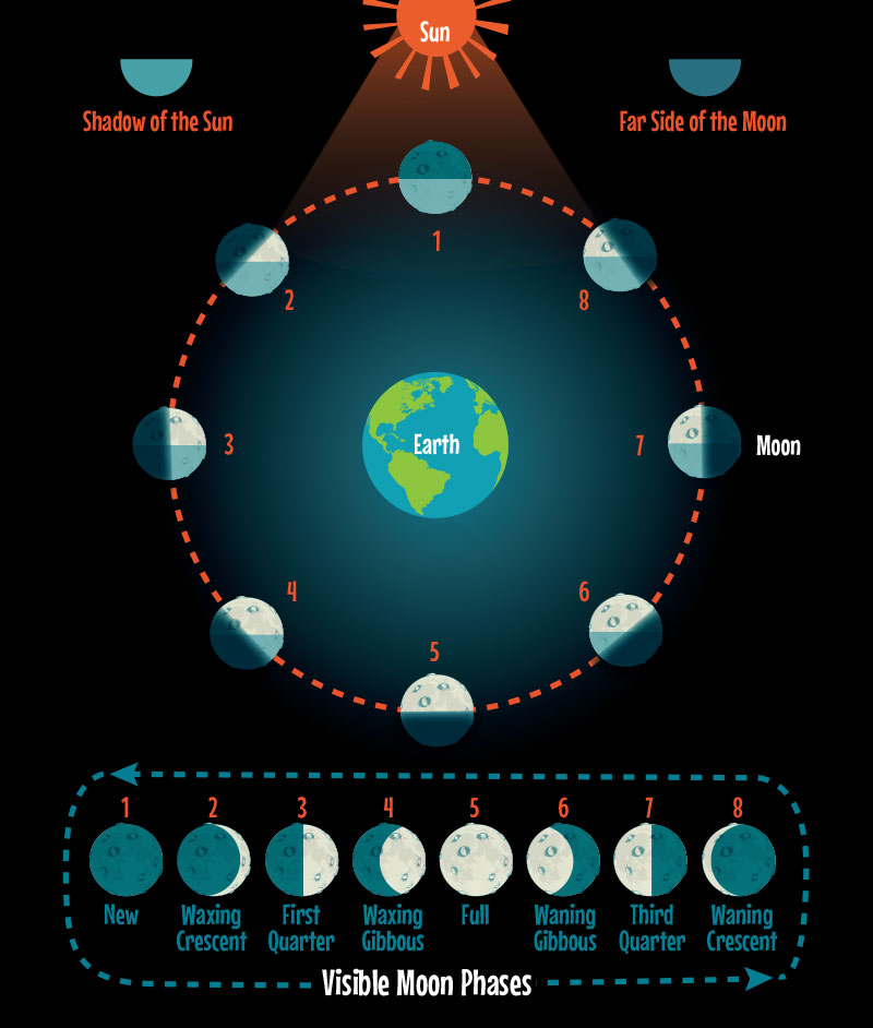3 Unique Ways To Teach Stemists The Phases Of The Moon